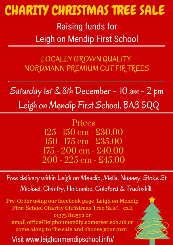 Leigh-on-Mendip First School Xmas tree sale!